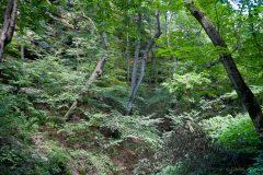 websiteportfolio-49-scaled